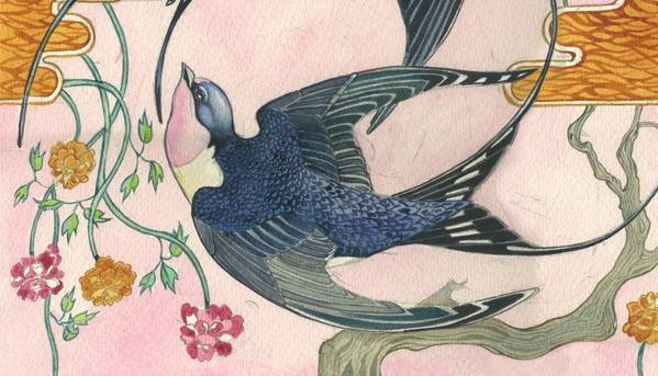 swallows-card